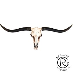 Longhorn 35 In Skull Plaque